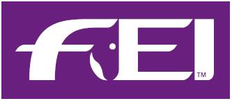 logo_fei