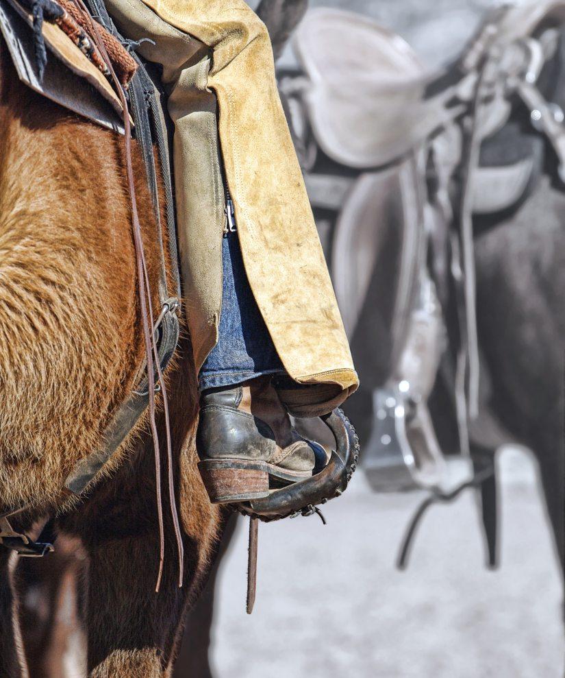 International Cowgirl 3