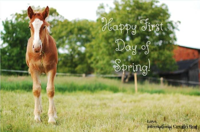 IC Spring